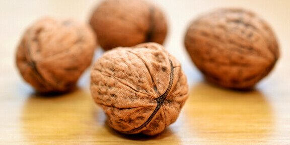 Facts About Walnuts